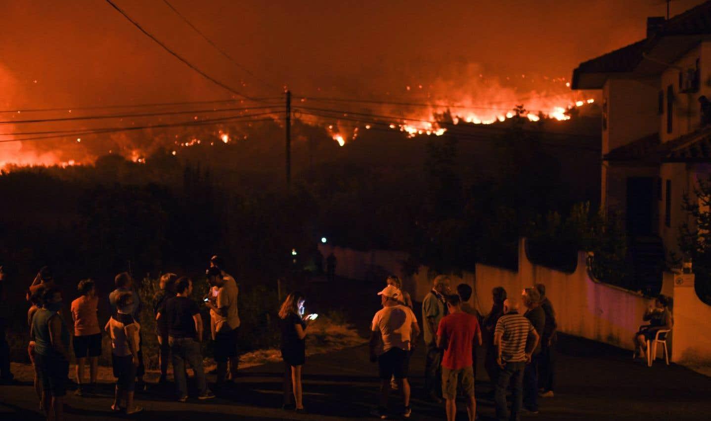 Portugal: 141000 hectares de forêt brûlés en sept mois