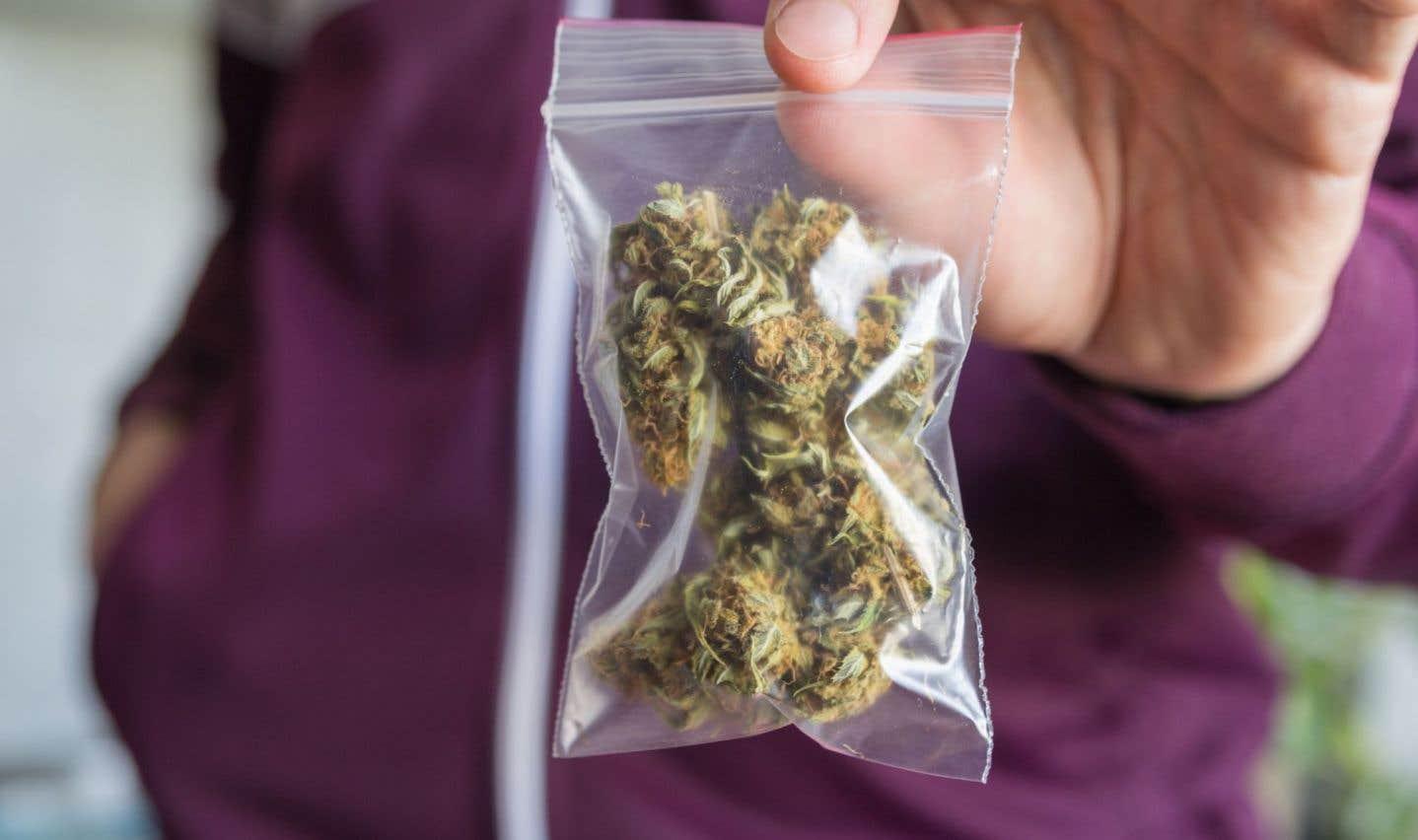 L'Ontario prend les devants dans la légalisation du cannabis