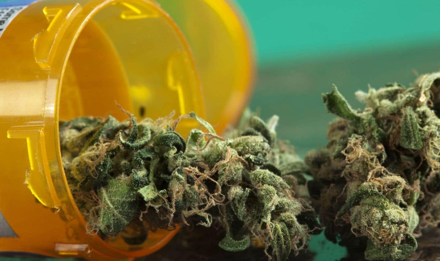 Ottawa violera peut-être des traités en légalisant la marijuana