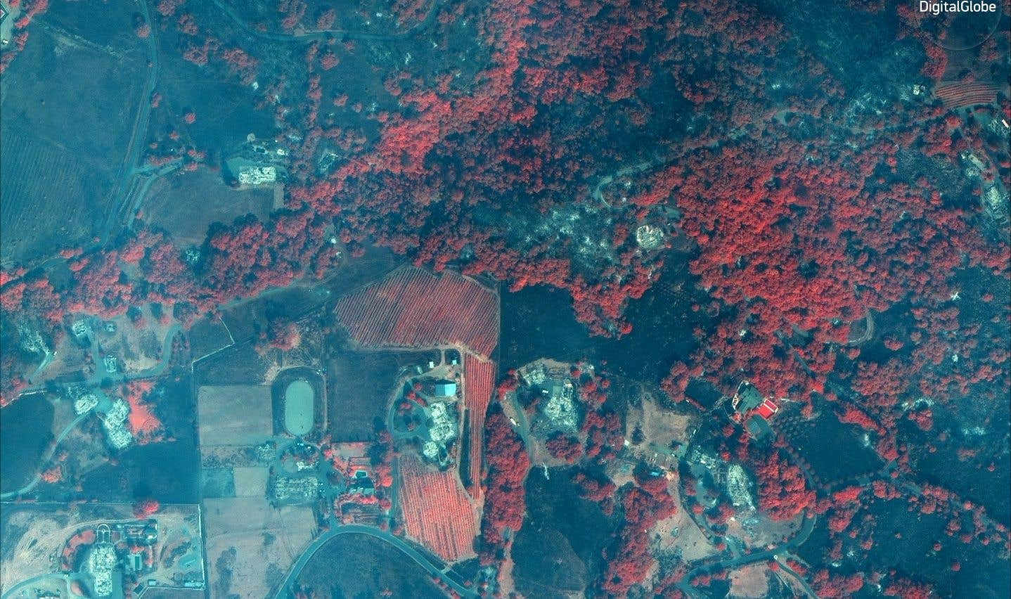 Maisons et vignobles détruits par le feu (en rouge: les endroits épargnés)