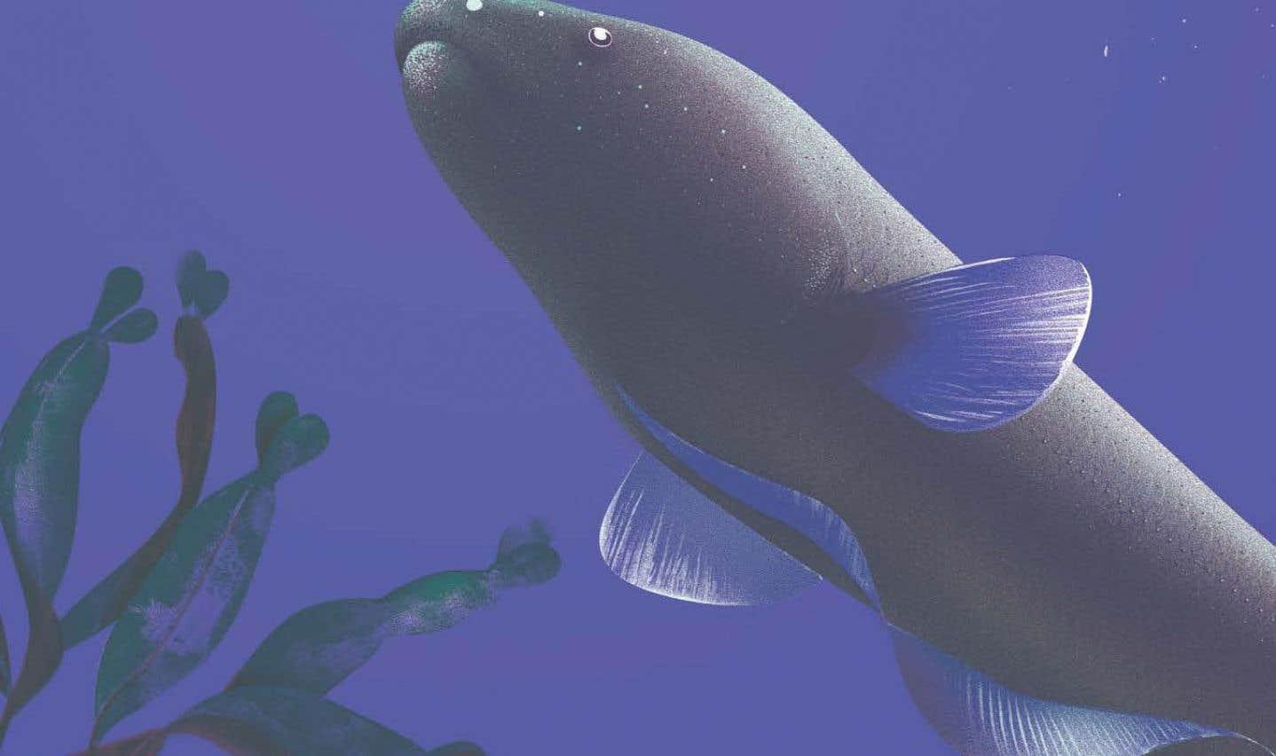 Jeunesse —Dans le monde fascinant des poissons électriques