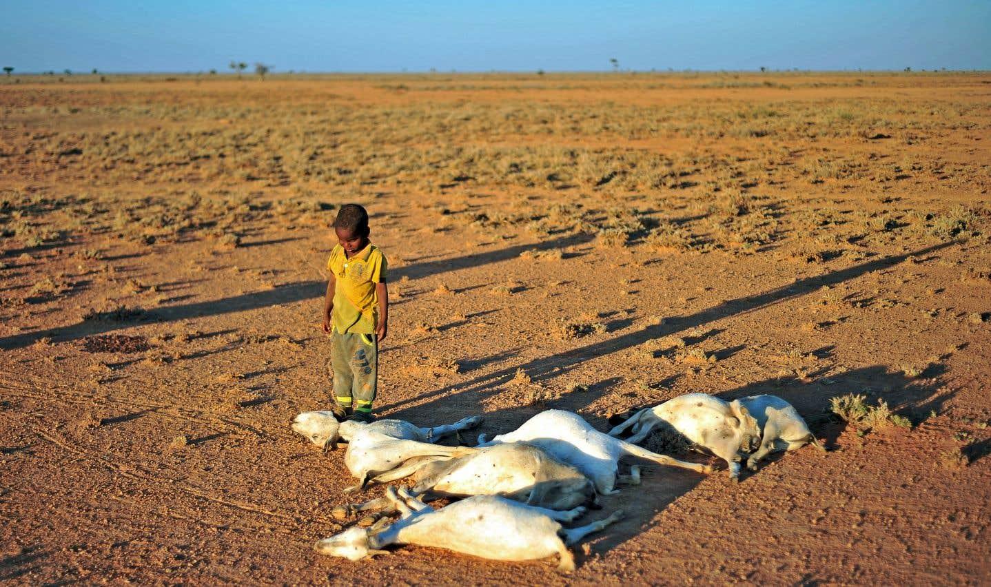 Des engagements trop faibles pour éviter le naufrage climatique