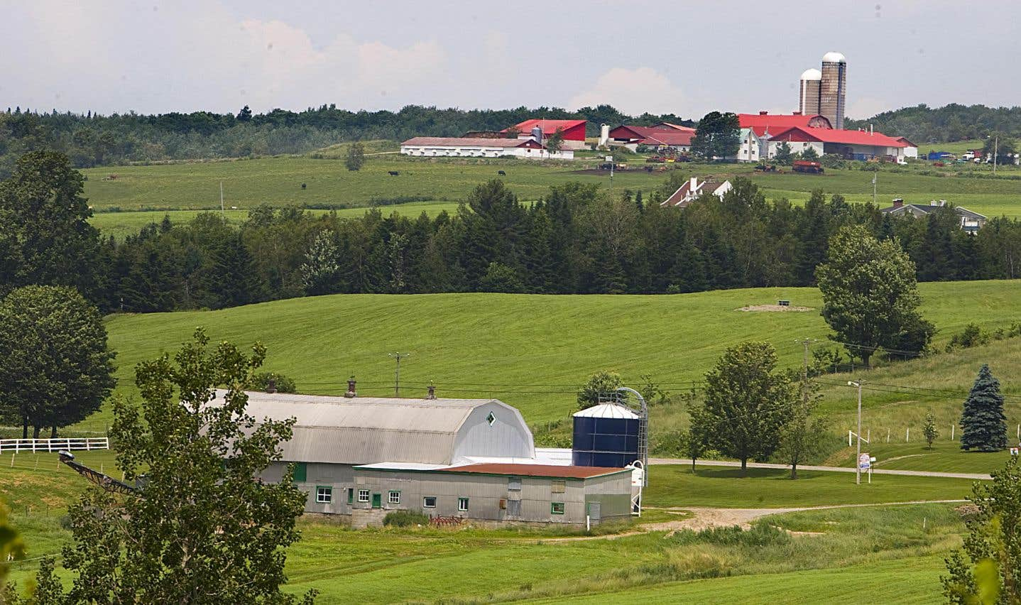 Plan de développement de la zone agricole: un outil pour l'agriculture