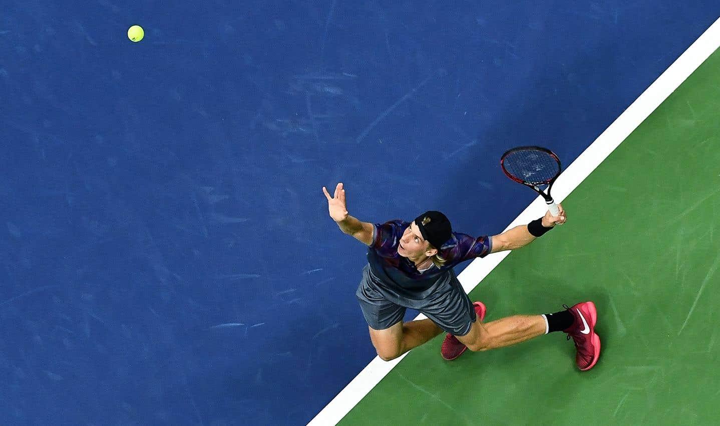 Alors que Denis Shapovalov avait commnencé l'année 2017 en faisant disqualifier le Canada de la Coupe Davis, le joueur s'est rattrapé en passant de la 250e position du classement mondial à la 51e.