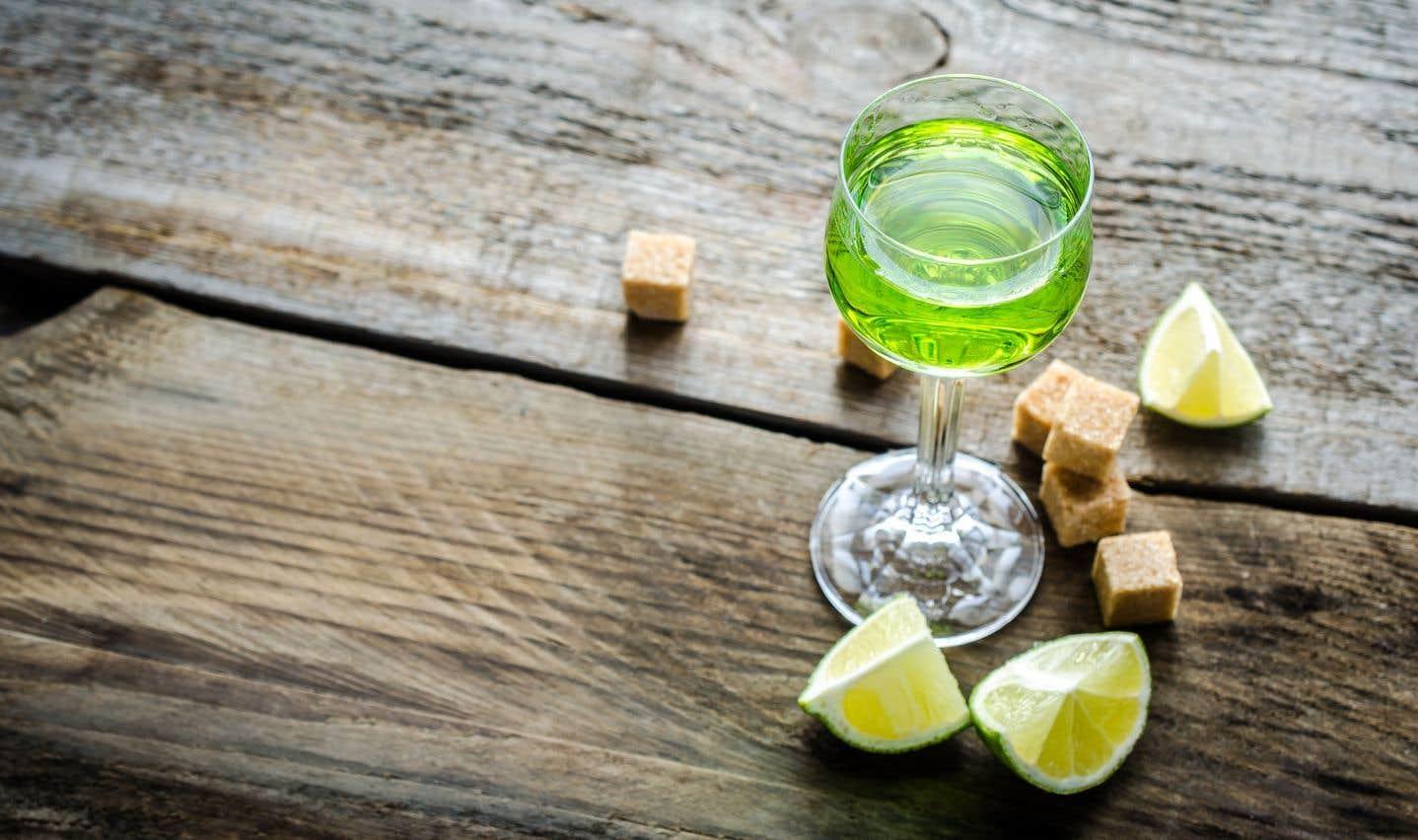 L'absinthe est à la fois une plante vivace, Artemisia absinthium ou grande armoise, et la boisson distillée qu'on en tire.