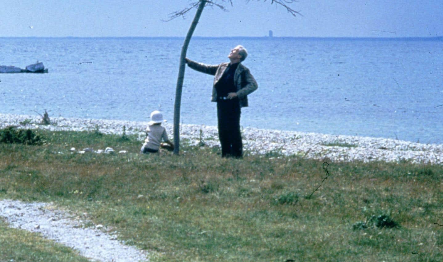 Le père et le fils plantent un arbre au début du film «Le sacrifice».