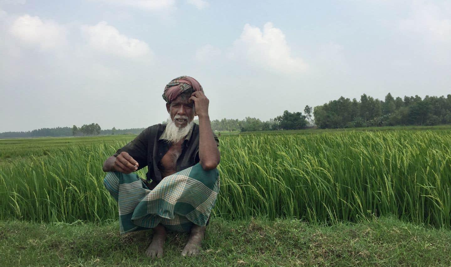La salinisation des terres bouleverse la vie des paysans au Bangladesh