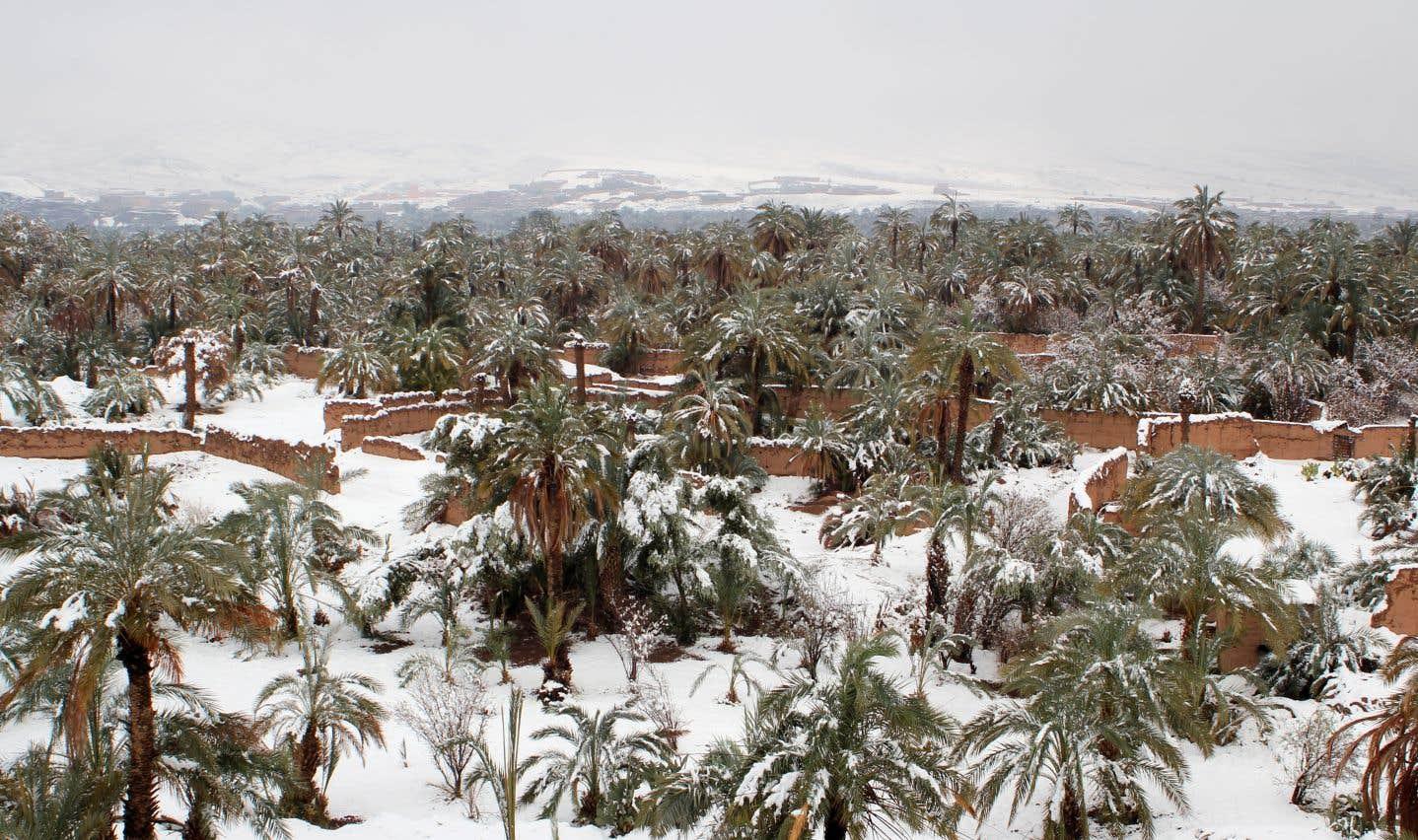 La ville de Zagora, aux portes du désert, est recouverte d'un manteau blanc.