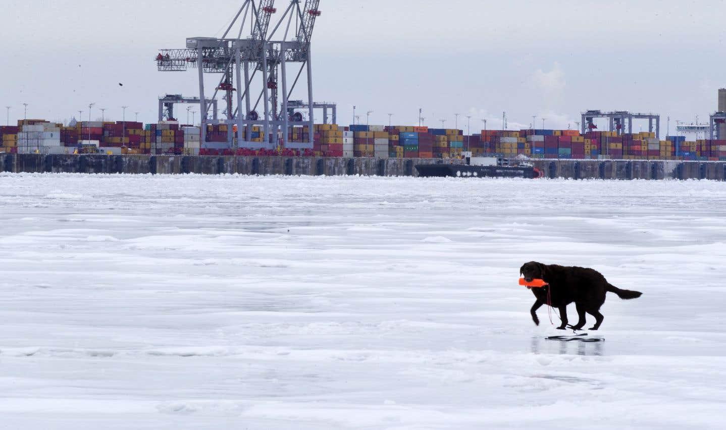 Terminal de Contrecoeur: Québec contrevient à sa propre loi