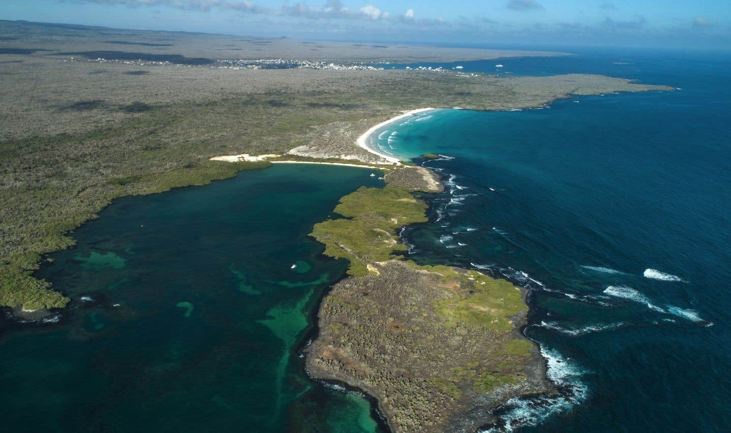 L'archipel volcanique a réussi jusqu'ici à se protéger et à préserver autant que possible ses espèces menacées.