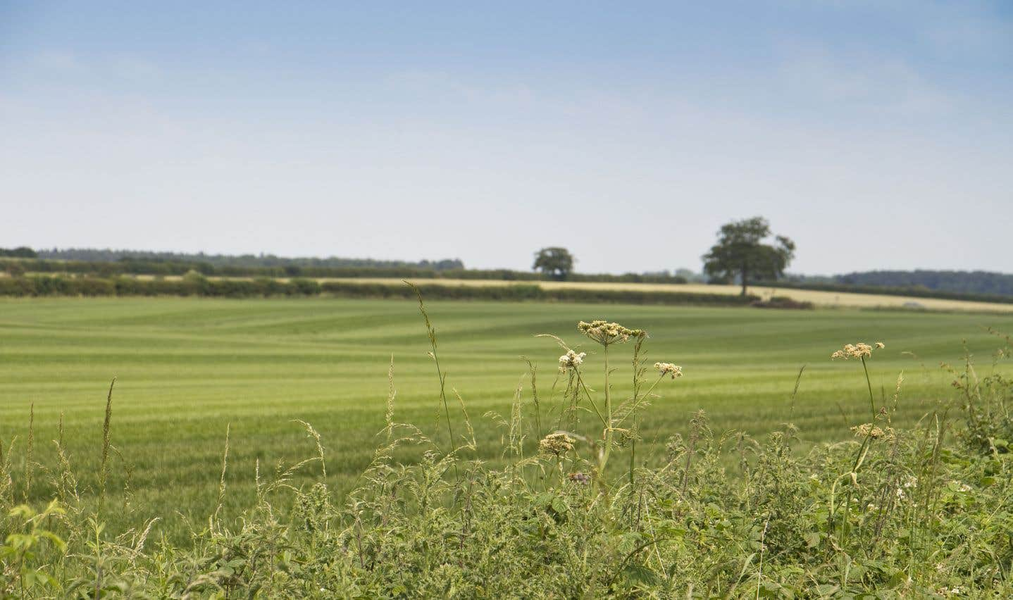 L'Union des producteurs agricoles s'oppose aux aménagements urbains sur des terres agricoles.