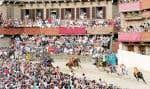 À Sienne, en Italie, pendant le Palio 2011, une course de chevaux fort... courue au square central de la ville.