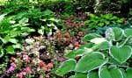 La fermeture des jardins extérieurs après 18h a fait passer de 75 à 3 le nombre de méfaits entre2012 et2013.
