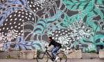 Une cycliste circulant sur la rue Sherbrooke à Montréal. Dans la métropole, 2,5% des déplacements se font à vélo.