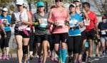 Les coureurs du demi-marathon ont dû affronter une chaleur quelque peu inhabituelle pour la saison, dimanche, lors de l'épreuve qui a obligé le déploiement d'un important dispositif médical.