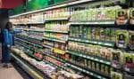 Le plastique a envahi notre quotidien, d'autant plus que plusieurs produits en contiennent à notre insu.