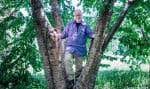Le biologiste Michel Lebœuf a choisi de prendre comme prétexte une discussion avec un bouleau jaune de sa terre du Piémont laurentien pour livrer ses réflexions sur l'organisation de la vie.