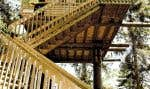 À Saint-Fulgence, au Parc aventures Cap Jaseux, les visiteurs peuvent passer la nuit dans l'une des maisons construites dans les arbres.