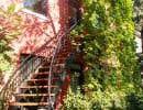 Les fondateurs de Montréal Houblonnière veulent promouvoir l'utilisation du houblon, une plante grimpante méconnue aux qualités ornementales, médicinales et brassicoles indéniables, afin d'améliorer la qualité de vie en ville.