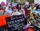 L'abolition du programme DACA a été dénoncée de toutes parts. Plusieurs manifestations ont été organisées un peu partout aux États-Unis, entre autres à Newark, au New Jersey, le 6septembre.